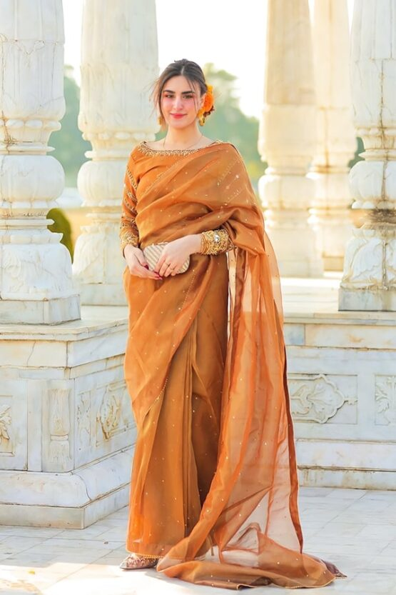 saree look for indian wedding guest