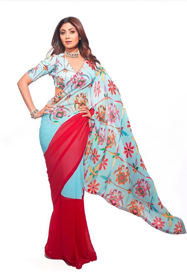 New saree design 2021 Images with price (2)